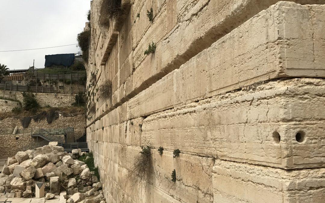 Chief Cornerstone or Stumbling Block